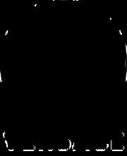 Versace_logo